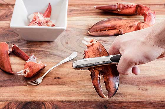 person breaking lobster claw